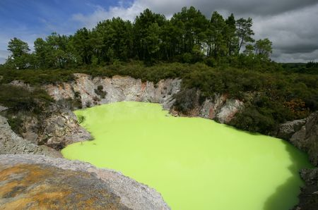 Strange green water of Lake Ngakoro in Rotorua, New Zealand.  (Green color is caused by the sulphur and ferrous salts mixing in the water)