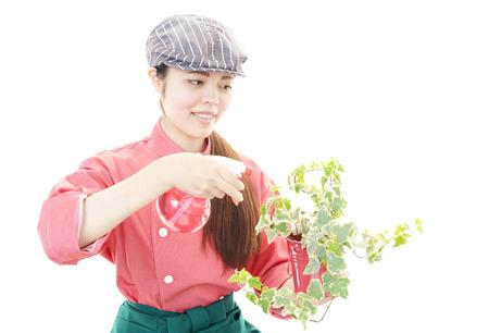 Sunabesyou140500112
