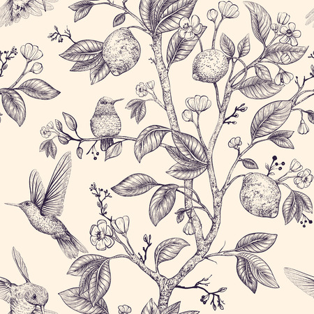 Illustration for Vector sketch pattern with birds and flowers. Hummingbirds and flowers, retro style, nature backdrop. Vintage monochrome flower design for web, wrapping paper, cover, textile, fabric, wallpaper - Royalty Free Image