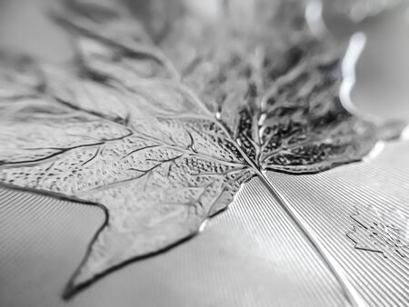 Photo pour Macro close up of a Canadian Maple pure Silver Bullion coin. Used as a means of exchange and a store of value - image libre de droit