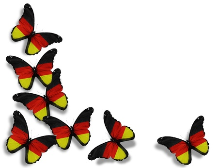 German flag butterflies, isolated on white background