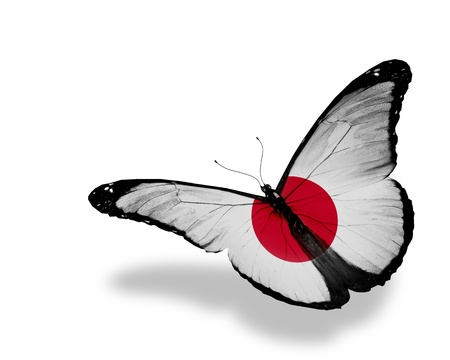 Photo for Japanese flag butterfly flying, isolated on white background - Royalty Free Image