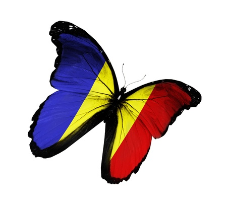 Photo pour Romanian flag butterfly flying, isolated on white background - image libre de droit