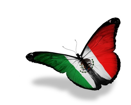 Photo pour United Mexican States flag butterfly flying, isolated on white background - image libre de droit