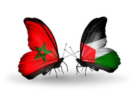 Two butterflies with flags on wings as symbol of relations Morocco and Palestine