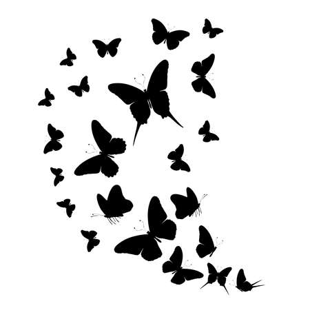 Photo for Flock of silhouette black butterflies on white background - Royalty Free Image