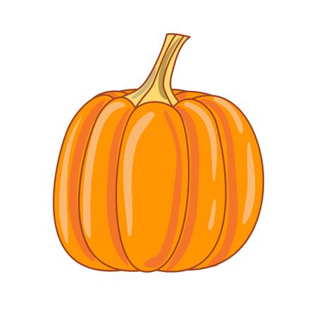 Illustration pour Pumpkin on a white background. - image libre de droit
