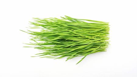 Photo pour wheatgrass plant on a white background. - image libre de droit