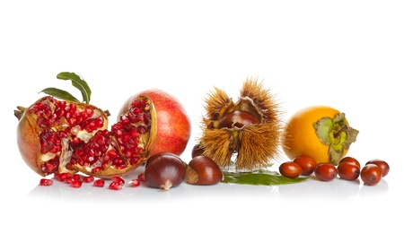 Autumn Fruits on white background