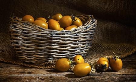 Foto de Varieties of yellow Heirloom cherry tomatoes called yellow pear and yellow datterino (or plum) cherry tomatoes. - Imagen libre de derechos