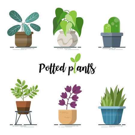 Illustration for Collection of Colorful Potted plants for designers in the design of all kinds of works. easy to use and highly customizable. beautiful and modern element which can be used in many purposes - Royalty Free Image