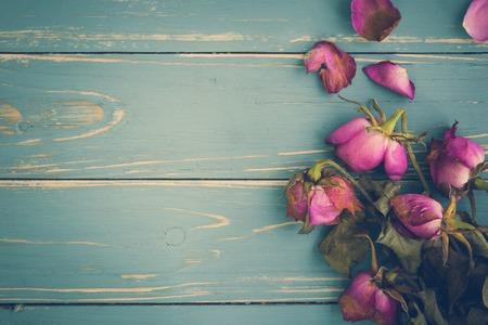Wilted Flower Vintage Background