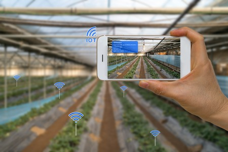 Photo pour Smart Farming Agriculture Concept Using Internet of Things, IOT, and Augmented Reality, AR, and Smart Device - image libre de droit