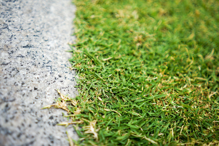 flat stone and grass