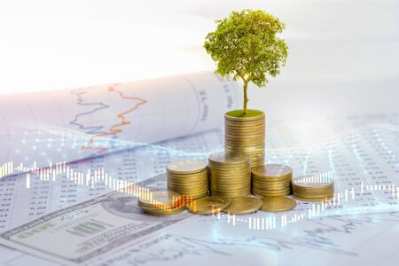 Photo pour The tree is growing both on the progress of money and financial reports, along with financial accounts, business, investment on the investor's table. Front investment concept - image libre de droit