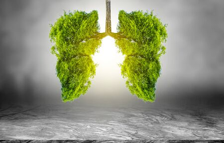 Photo pour Lung green tree-shaped images, medical concepts, autopsy, 3D display and animals as an element - image libre de droit