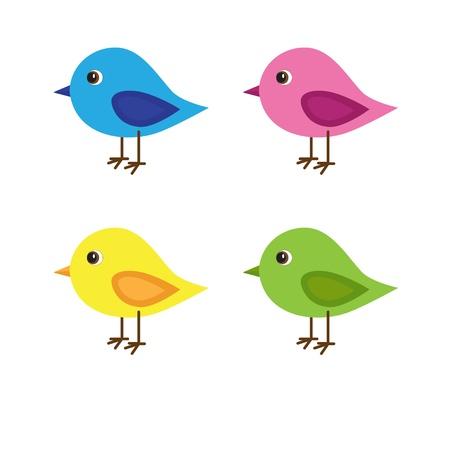 Vektor für Set of four birds with various colors - Lizenzfreies Bild