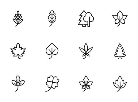 Photo pour Leaves line icon set. Maple, oak, fir tree. Nature concept. Can be used for topics like forest, park, ecology - image libre de droit