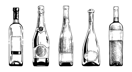 Illustration pour Vector set of wine and champagne bottles in ink hand drawn style. isolated on white. - image libre de droit