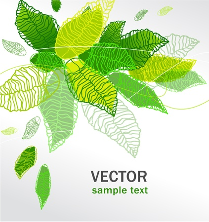 abstract vector floral multicolor background with green leafs