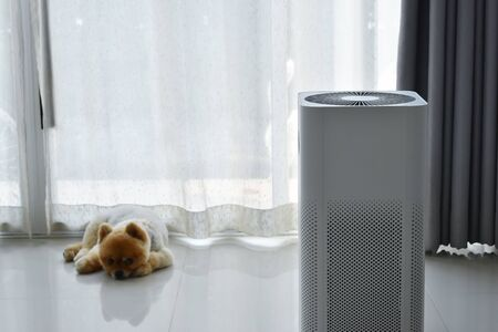 Photo pour air purifier system cleaning dust pm 2.5 pollution in living room with cute dog in home - image libre de droit