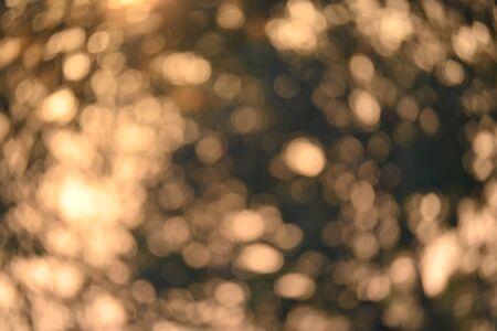 Foto de abstract background golden bokeh of sun light glowing shiny through tree in the morning day - Imagen libre de derechos