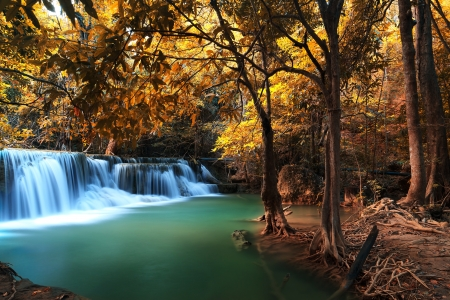 Autumn Deep Forest Waterfall
