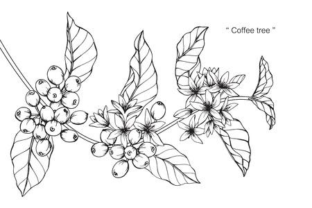 Ilustración de Coffee tree. Drawing and sketch with black and white line-art. - Imagen libre de derechos