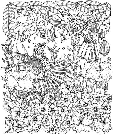 Illustration pour Hummingbirds and flowers coloring page - image libre de droit