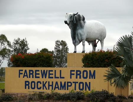 Rockhampton, Australia - November 6, 2007: The Monument especial oxen that survives in very dry north Australia.