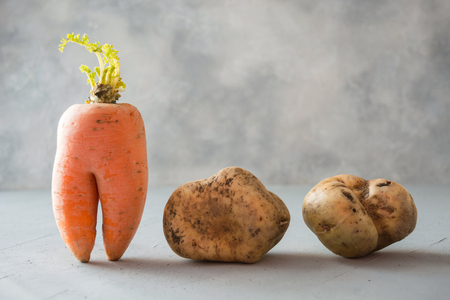 Photo for Ugly organic abnormal vegetables carrot and potatoes. Space for text. Concept organic vegetables. - Royalty Free Image
