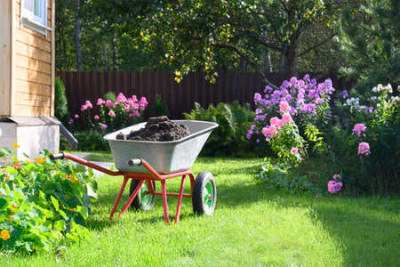 Photo for Wheelbarrow full of compost on green lawn - Royalty Free Image