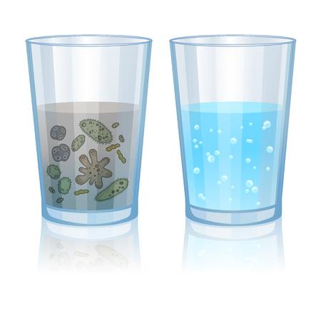 Illustration pour Glass with clean and dirty water, infection illustration. Vector illustration - image libre de droit