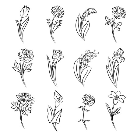 Illustration pour Collection of outlined flowers. Tulip, chamomile, lily of the valley, rose, peony, narcissus, orchid, iris, chrysanthemum, calla, carnation and lily In sketch hand drawn style. Vector illustration - image libre de droit