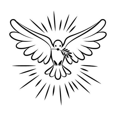 Illustration pour Flying dove vector sketch. Dove of Peace. Silhouette of a flying dove with olive branch. White dove, bird dove, white pigeon doodle. Vector illustration - image libre de droit