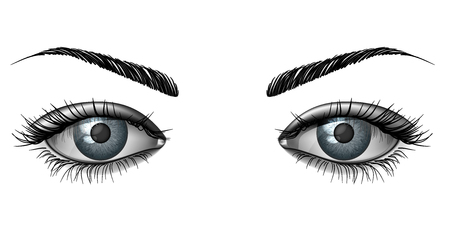 Realistic female eye close up, wide open glance with eyebrows