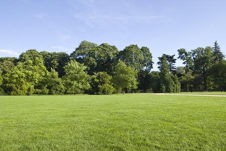 Photo pour park landscape - image libre de droit