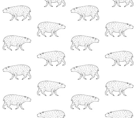 Illustration pour Vector seamless pattern of hand drawn sketch capybara isolated on white background - image libre de droit