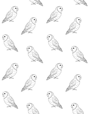 Vector Seamless Pattern Of Hand Drawn Doodle Sketch Lovebirds Parrots Isolated On White Background Royalty Free Vector Graphics