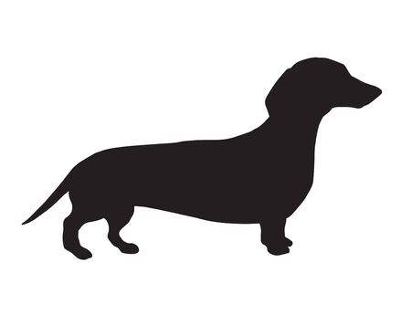 Illustration pour Vector black dachshund dog silhouette isolated on white background - image libre de droit