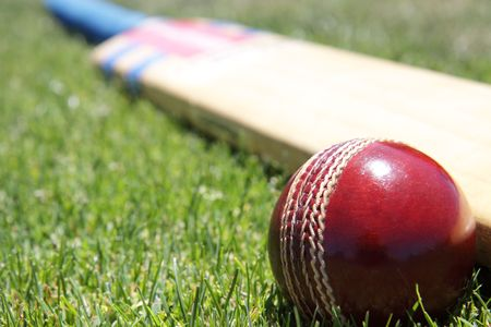 Foto per New cricket ball and bat on green grass. - Immagine Royalty Free