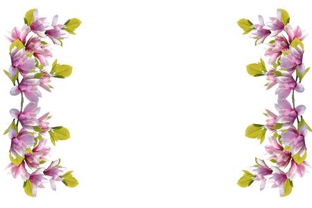 Photo pour Magnolia flower bouquet isolated on white background. - image libre de droit
