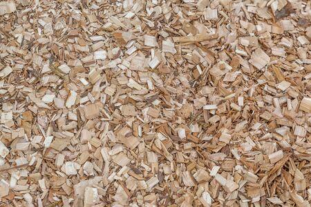 Foto de Green Field of Raw Tree Mulch Pieces Photography - Imagen libre de derechos