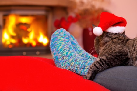 Woman relaxes by warm fire and warming up her feet in woollen socks.Seated Gray Cat with Santa hat and a fireplace.Christmas cat by the fireplace.