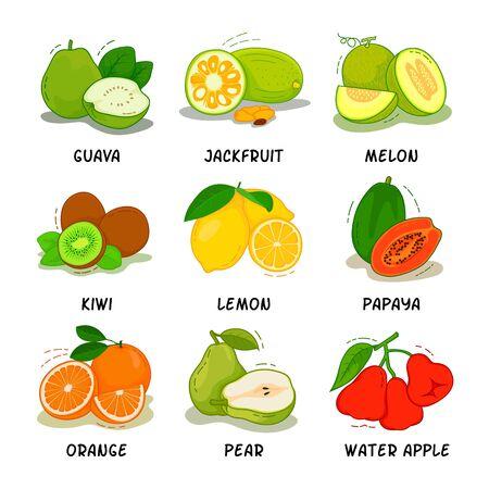 Illustration pour Fruit, Fruits Collection - image libre de droit