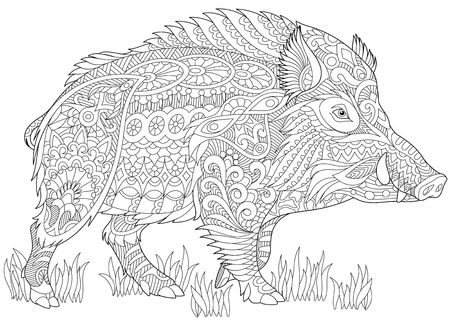 Illustration for Stylized wild boar (razorback, warthog, hog, pig). Freehand sketch for adult anti stress coloring book page with doodle and zentangle elements. - Royalty Free Image
