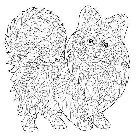 Illustrazione per Coloring page of pomeranian, dog symbol of 2018 Chinese New Year. Freehand sketch drawing for adult antistress colouring book with doodle - Immagini Royalty Free