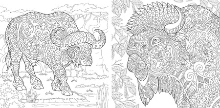 Illustration pour Coloring Pages. Coloring Book for adults. Colouring pictures with buffalo and bison. Antistress freehand sketch drawing with doodle and zentangle elements. - image libre de droit