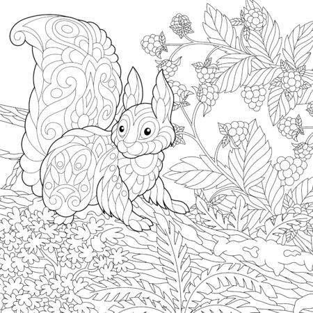 Illustration for Coloring page. Coloring picture of cute squirrel in the forest. Line art design for adult colouring book with doodle - Royalty Free Image