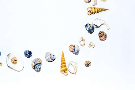 Foto de Round corner of small marine colorful light orange blue pink purple seashells of different shapes on white background. Design template - Imagen libre de derechos